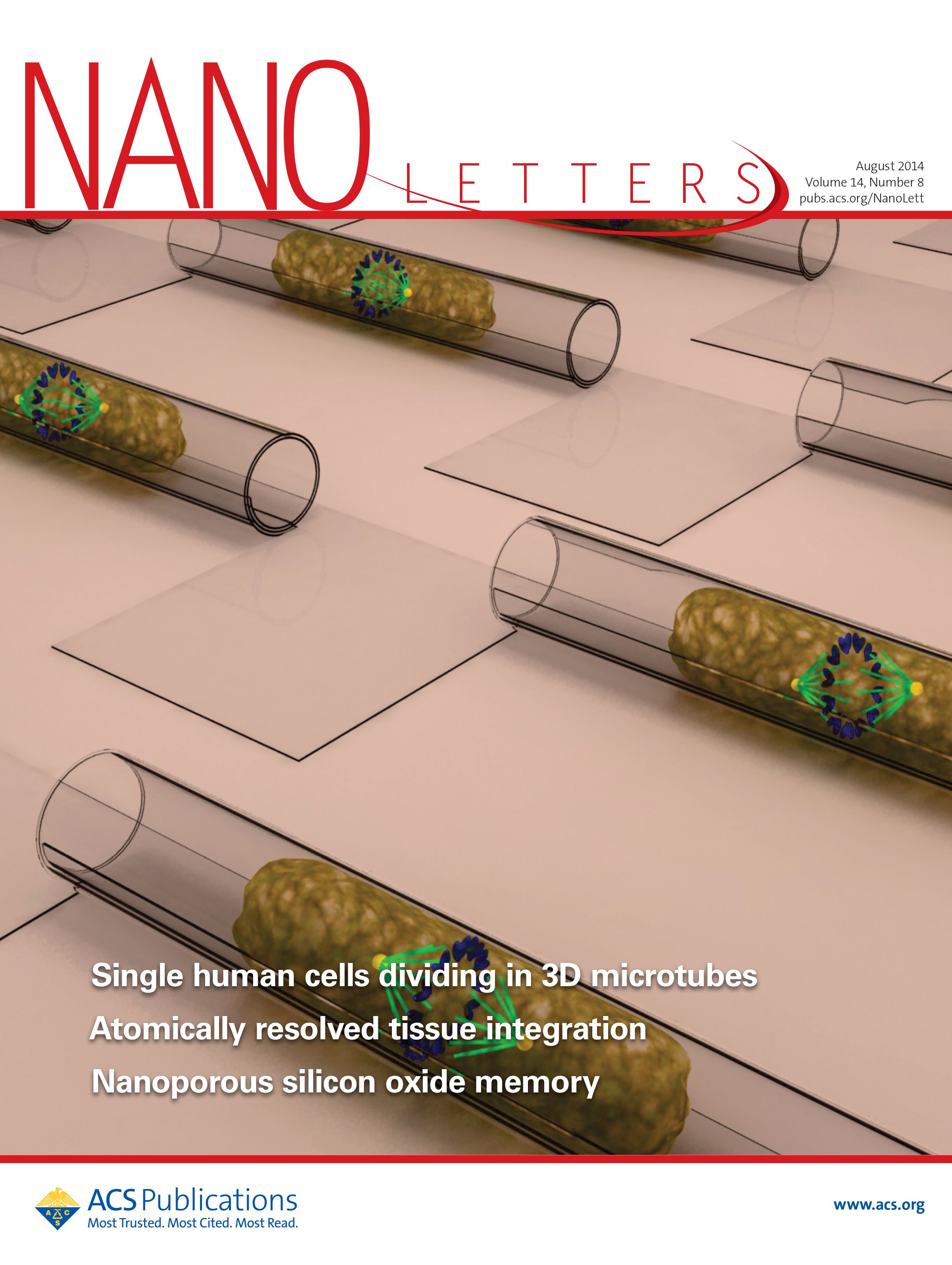 Rolled-up functionalized nanomembranes as three-dimensional cavities for single cell studies
