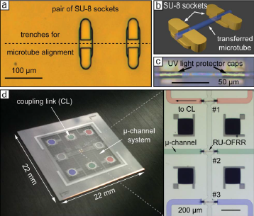 On-chip integration of rolled-up ring resonators as label-free optofluidic sensors