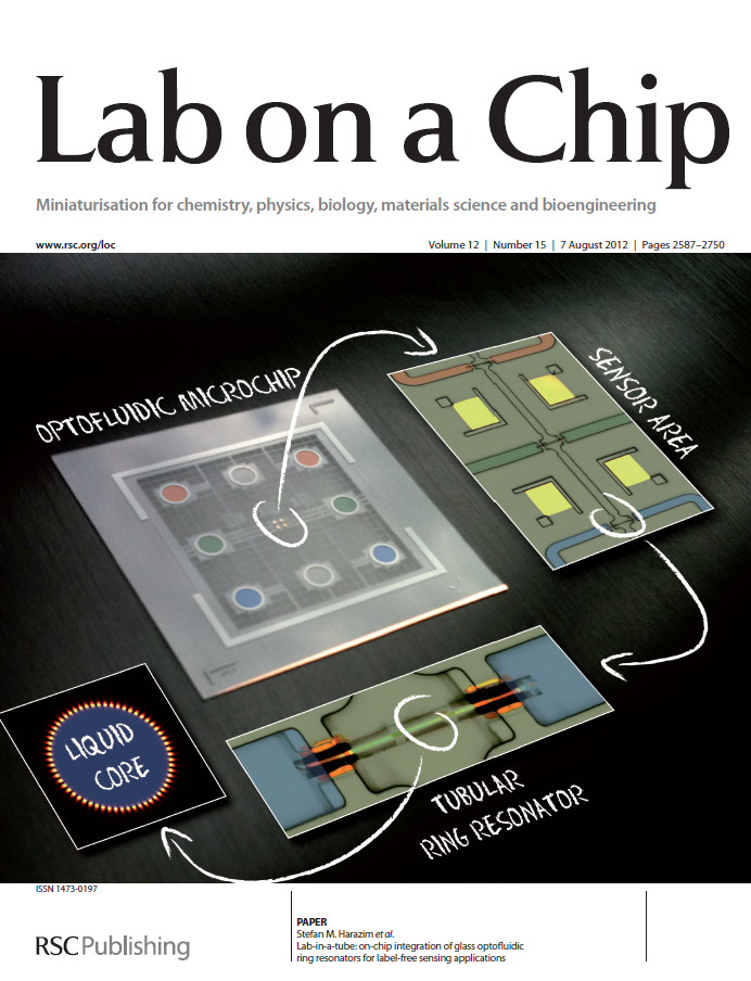 Lab-in-a-tube: On-chip integration of rolled-up ring resonators as label-free optofluidic sensors