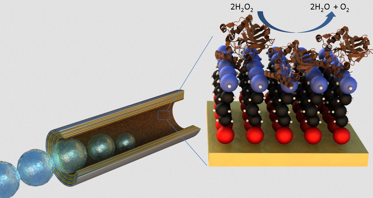 Highly efficient locomotion of hybrid biocatalytic microengines
