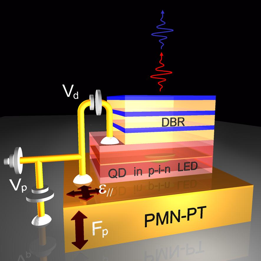 Engineering the properties of Quantum-Light-Emitting Diodes by strain